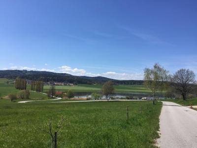 Chalupa u rybníka Kvítkovice - ubytování Jižní Čechy - chalupa k pronajmutí v Jižní Čechách - fotografie č. 10