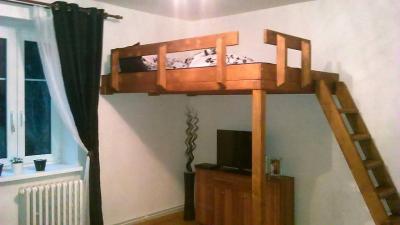 Apartmán Jáchymov - ubytování Krušné hory - ubytování v apartmánu v Krušných horách - fotografie č. 1