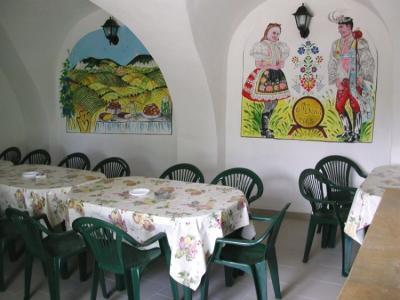 Pension u Rabatů - ubytování Jižní Morava - ubytování v penzionu na Jižní Moravě - fotografie č. 8