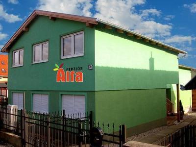 Penzión ALFA - ubytování Jižní Slovensko - ubytování v penzionu na Jižním Slovensku - fotografie č. 1