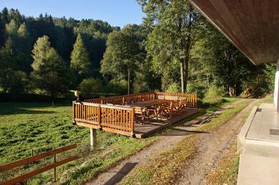 Orlička - ubytování Orlické hory - chalupa k pronajmutí v Orlických horách - fotografie č. 3