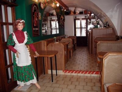 Penzion a Kavárna U Holubů Nový Jičín - ubytování Beskydy - ubytování v penzionu v Beskydech - fotografie č. 3