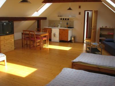 Penzion U dvou smrků - ubytování Orlické hory - ubytování v apartmánu v Orlických horách - fotografie č. 2