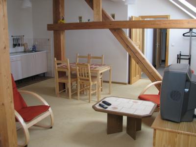 Penzion U dvou smrků - ubytování Orlické hory - ubytování v apartmánu v Orlických horách - fotografie č. 3