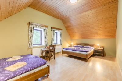 Hotel Perla Jizery - ubytování Jizerské hory - ubytování v hotelu v Jizerských horách - fotografie č. 11