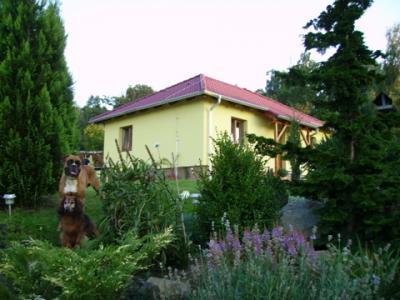 Ubytování Švrčinová - ubytování Jižní Čechy - ubytování v penzionu v Jižní Čechách - fotografie č. 1