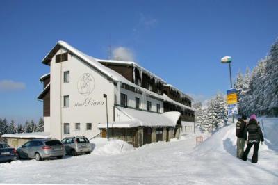 HOTEL DIANA - ubytování Krkonoše - ubytování v hotelu v Krkonoších - fotografie č. 1