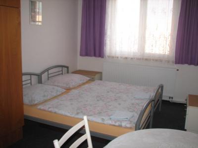 Penzion Marcela - ubytování Jižní Morava - ubytování v penzionu na Jižní Moravě - fotografie č. 3
