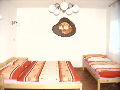 Rekreační domek ve Sněžném - ubytování Orlické hory - chalupa k pronajmutí v Orlických horách - fotografie č. 9