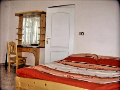 Rekreační domek ve Sněžném - ubytování Orlické hory - chalupa k pronajmutí v Orlických horách - fotografie č. 11
