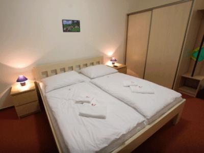 Hotel Petra - ubytování Jizerské hory - ubytování v hotelu v Jizerských horách - fotografie č. 3