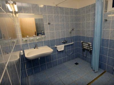Hotel Petra - ubytování Jizerské hory - ubytování v hotelu v Jizerských horách - fotografie č. 4