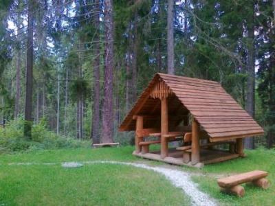 Chata ALPINA - ubytování Střední Slovensko - chata k pronajmutí  na Středním Slovensku - fotografie č. 3