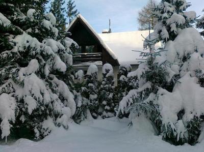 Chata82 Vysoke Tatry - ubytování Vysoké Tatry - chata k pronajmutí  ve Vysokých Tatrách - fotografie č. 1