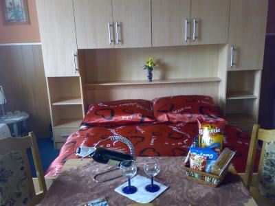 Pension Medvídek - ubytování Krušné hory - ubytování v penzionu v Krušných horách - fotografie č. 4