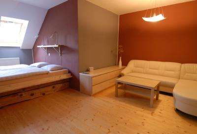 Penzion Dvůr - ubytování Jižní Čechy - ubytování v apartmánu v Jižní Čechách - fotografie č. 4