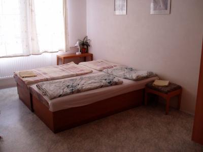 Penzion u Nováků - ubytování Jeseníky - ubytování v apartmánu v Jeseníkách - fotografie č. 3