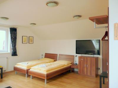 AMI penzion Brno - ubytování Jižní Morava - ubytování v penzionu na Jižní Moravě - fotografie č. 1