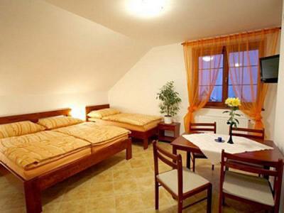 Penzion Bucharka - ubytování Jizerské hory - ubytování v penzionu v Jizerských horách - fotografie č. 2