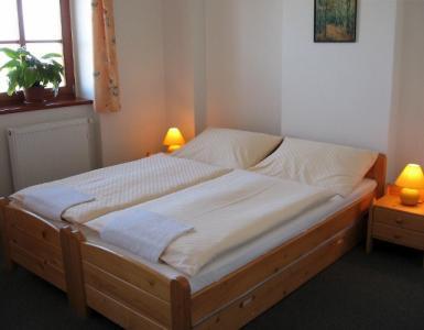 Penzion a Restaurace Bouquet - ubytování Jižní Morava - ubytování v penzionu na Jižní Moravě - fotografie č. 3