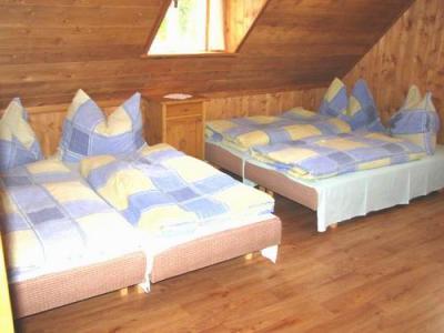Nový dům Petra u sjezdovek - ubytování Orlické hory - chalupa k pronajmutí v Orlických horách - fotografie č. 10