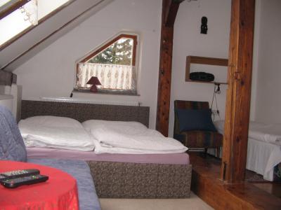 apartmán Leona Vejběrová - ubytování Jeseníky - ubytování v apartmánu v Jeseníkách - fotografie č. 2