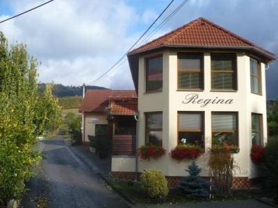 Penzion Regina - ubytování Střední Morava - ubytování v penzionu na Střední Moravě - fotografie č. 1