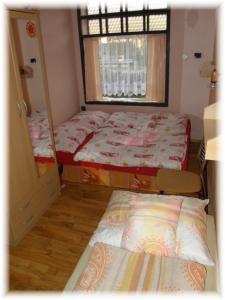 Apartmán ASEJ - ubytování Jeseníky - ubytování v apartmánu v Jeseníkách - fotografie č. 4