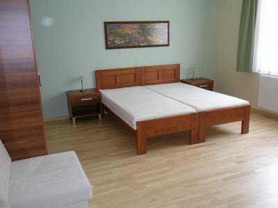 Apartmány Slobodova - ubytování Jižní Morava - ubytování v apartmánu na Jižní Moravě - fotografie č. 4