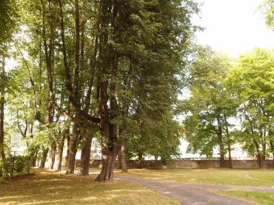 Zámeček Grohmann - ubytování Jeseníky - ubytování v penzionu v Jeseníkách - fotografie č. 4