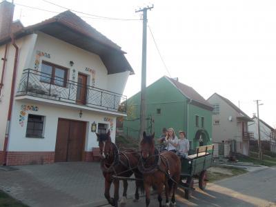 Sklep u hřiště - ubytování Jižní Morava - ubytování v penzionu na Jižní Moravě - fotografie č. 7