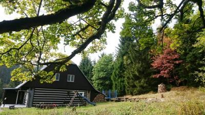 Hájovna Šerlišský Mlýn - ubytování Orlické hory - chalupa k pronajmutí v Orlických horách - fotografie č. 5