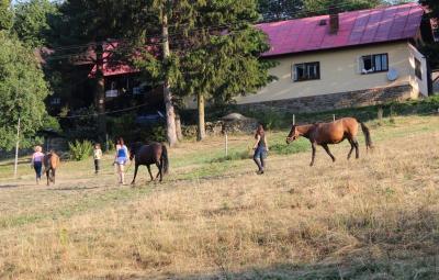 Chalupa Lužná - huculské koně - ubytování Beskydy - chalupa k pronajmutí v Beskydech - fotografie č. 1