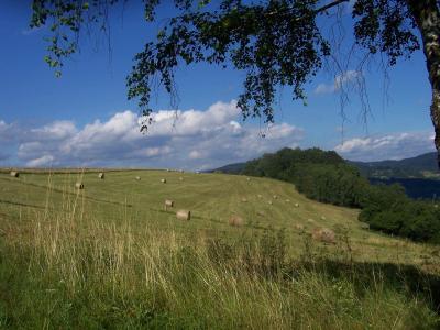 Chalupa Lužná - huculské koně - ubytování Beskydy - chalupa k pronajmutí v Beskydech - fotografie č. 2