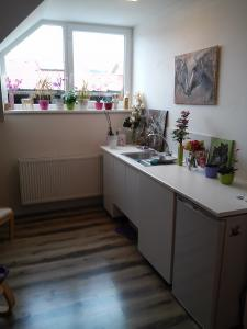 Malý byt v rodinném domku Kuřim - ubytování Jižní Morava - ubytování v apartmánu na Jižní Moravě - fotografie č. 1