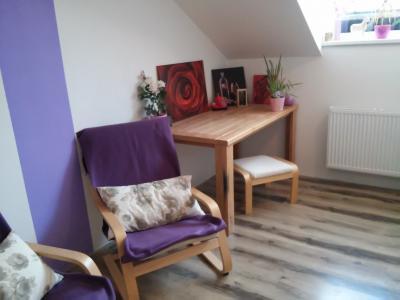 Malý byt v rodinném domku Kuřim - ubytování Jižní Morava - ubytování v apartmánu na Jižní Moravě - fotografie č. 2