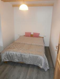 Apartmán U Kačenky - ubytování Orlické hory - ubytování v apartmánu v Orlických horách - fotografie č. 7