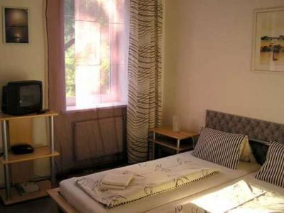 Penzion U Leopolda - ubytování Jižní Morava - ubytování v penzionu na Jižní Moravě - fotografie č. 3